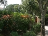 villa sainte maxime in frankrijk natuur